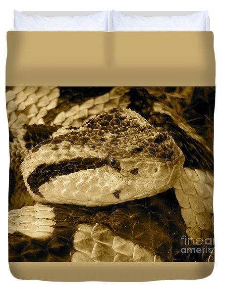Viper's Glare Duvet Cover by KD Johnson