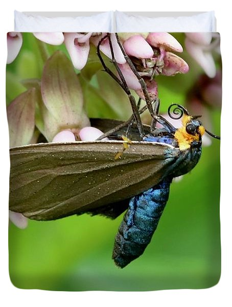 Virginia Ctenucha Moth Duvet Cover