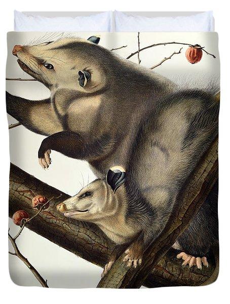 Virginian Opossum Duvet Cover