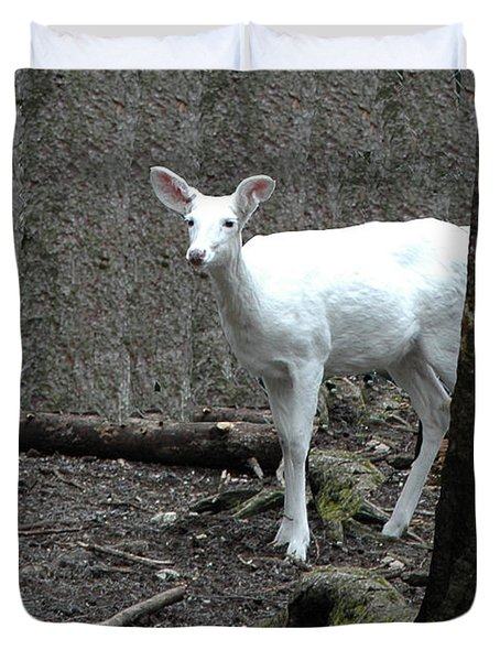 Duvet Cover featuring the photograph Vision Quest White Deer by LeeAnn McLaneGoetz McLaneGoetzStudioLLCcom