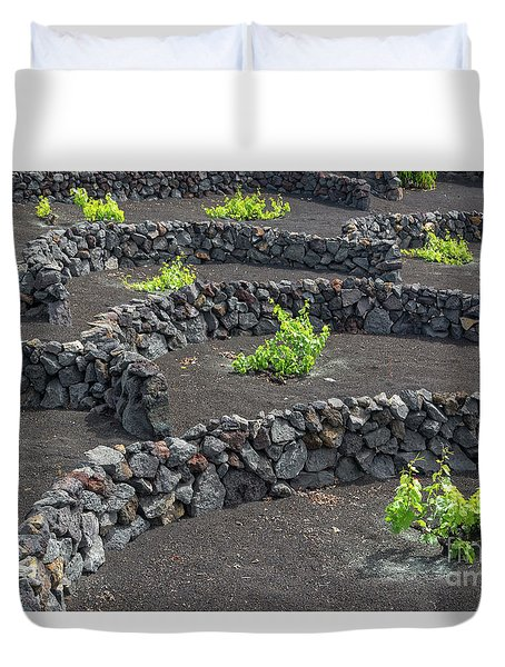 Volcanic Vineyards Duvet Cover by Delphimages Photo Creations