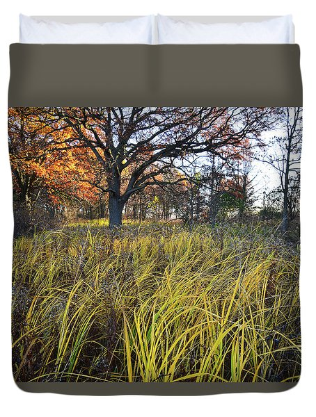Duvet Cover featuring the photograph Volo Bog Fall Morning by Ray Mathis