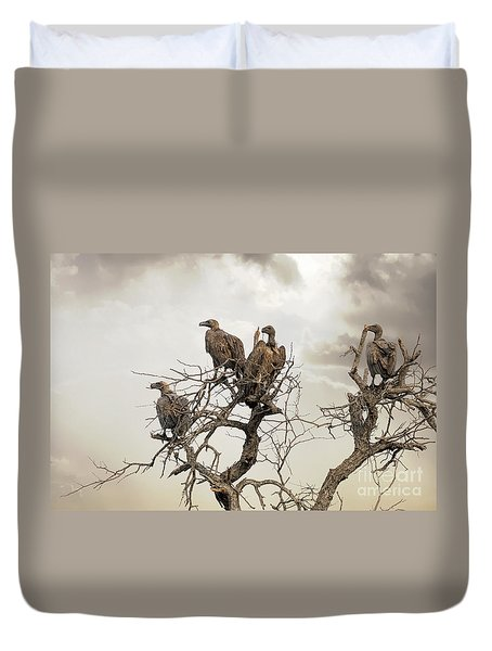 Vultures In A Dead Tree.  Duvet Cover by Jane Rix