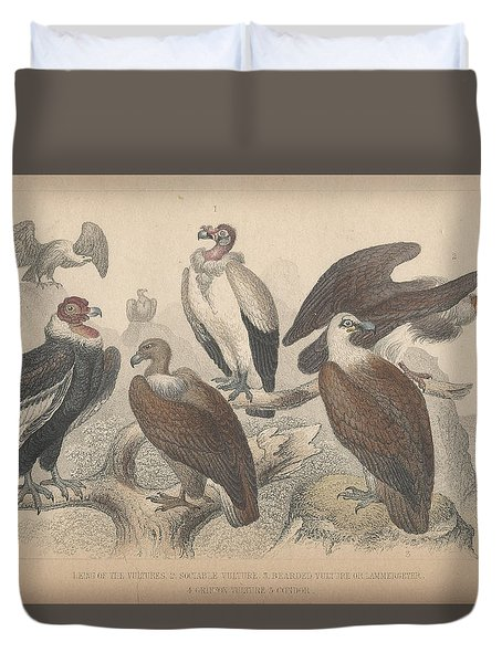 Vultures Duvet Cover
