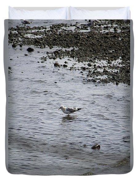 Wading Gull Duvet Cover
