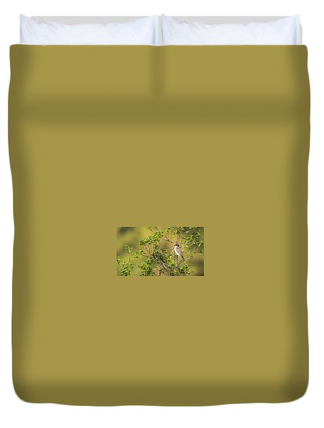 Waiting For A Victim Duvet Cover by Onyonet  Photo Studios