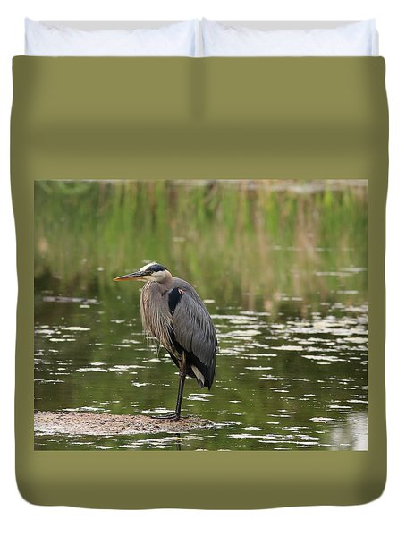 Duvet Cover featuring the photograph Waiting For Breakfast by Lynn Hopwood