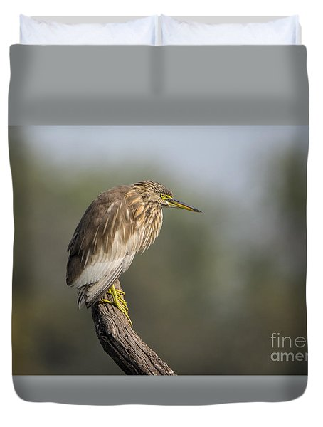 Waiting Patiently Duvet Cover by Pravine Chester