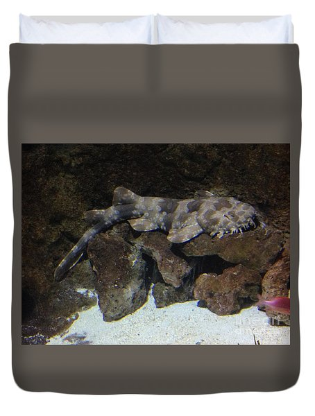 Waiting To Eat You - Spotted Wobbegong Shark Duvet Cover by Richard W Linford