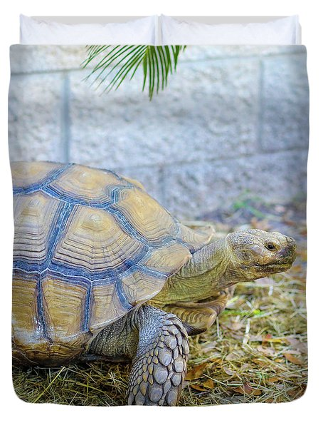 Duvet Cover featuring the photograph Walking Turtle by Raphael Lopez