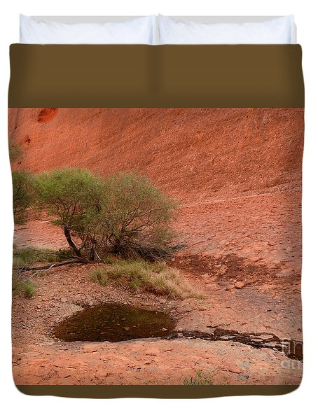 Duvet Cover featuring the photograph Walpa Gorge 01 by Werner Padarin