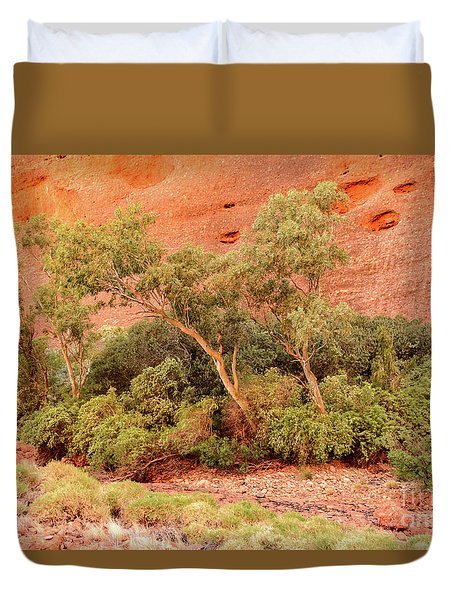 Duvet Cover featuring the photograph Walpa Gorge 03 by Werner Padarin