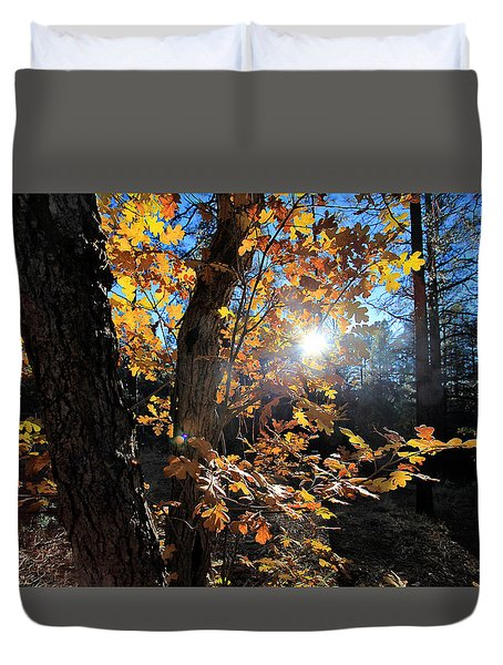 Waning Autumn Duvet Cover