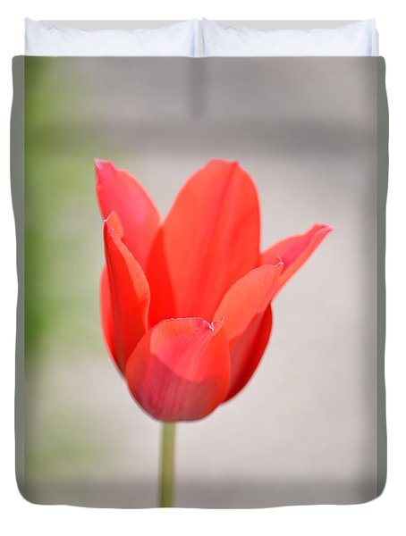 Warm Pink Tulip Duvet Cover by William Bartholomew