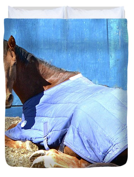 Warm Winter Day At The Horse Barn Duvet Cover