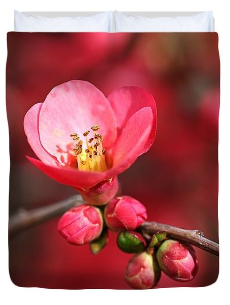 Warmth Of Flowering Quince Duvet Cover