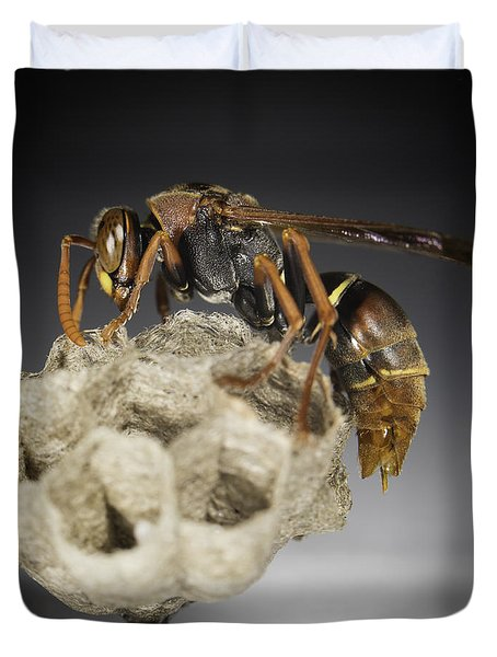 Wasp On A Nest Duvet Cover
