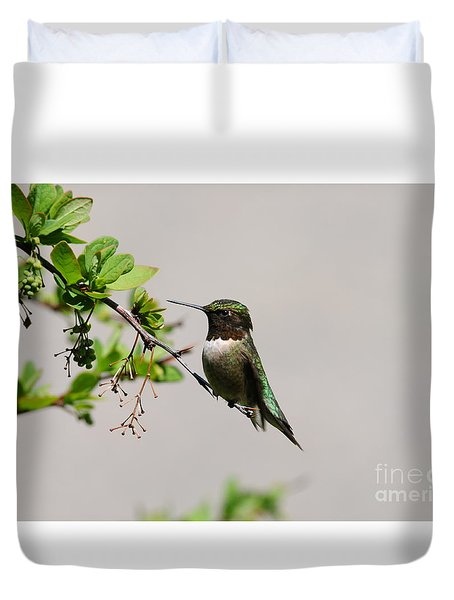 Duvet Cover featuring the photograph Watchful Male Hummer by Sandra Updyke