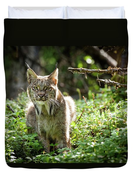 Watchful Mama Lynx Duvet Cover