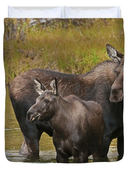 Watchful Moose Duvet Cover