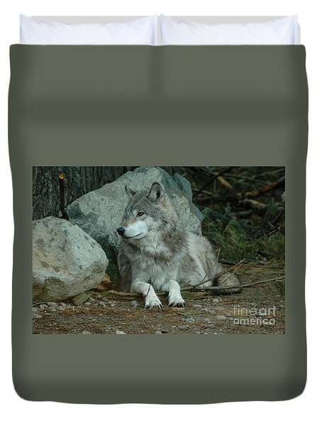 Watchful Wolf Duvet Cover