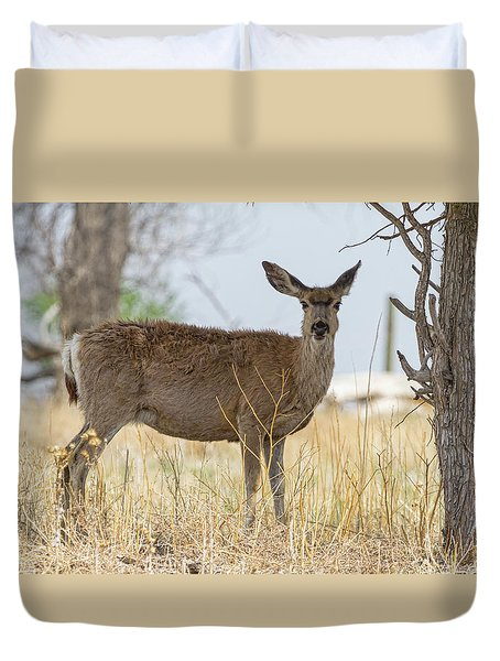 Watching From The Woods Duvet Cover by James BO Insogna