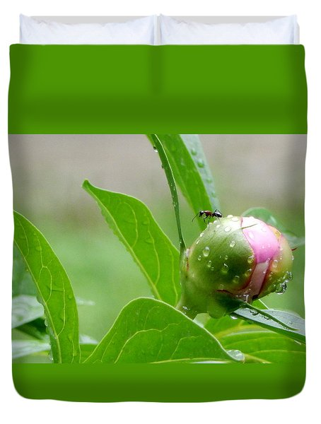 Duvet Cover featuring the photograph Watching Out For Puddles by Betty-Anne McDonald