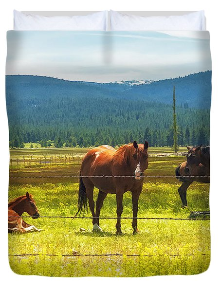 Watching The Colt Duvet Cover by Nancy Marie Ricketts