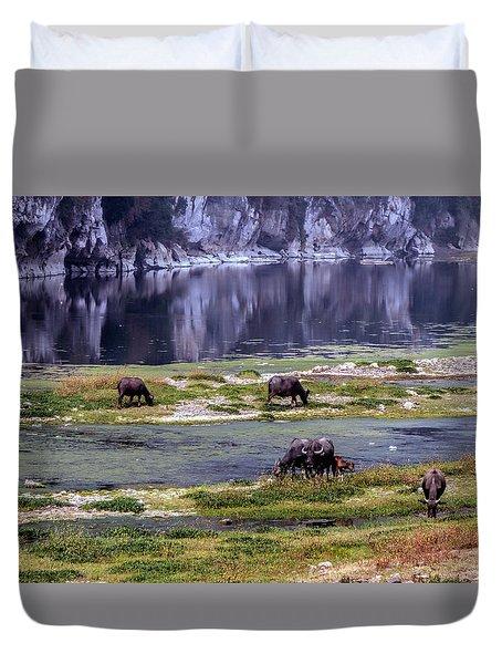 Water Buffalo On The Li River China Duvet Cover