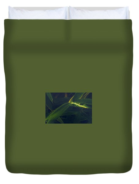 Water Catcher Duvet Cover