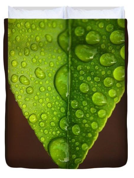 Water Droplets On Lemon Leaf Duvet Cover by Ralph A  Ledergerber-Photography