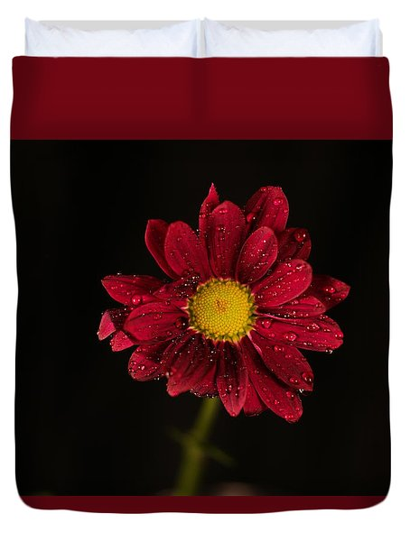 Duvet Cover featuring the photograph Water Drops On A Flower by Jeff Swan