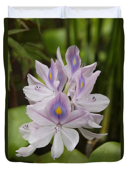 Water Hyacinth Duvet Cover by Wendy Coulson