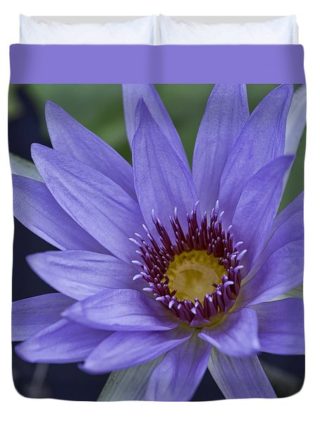Water Lilly 2 Duvet Cover
