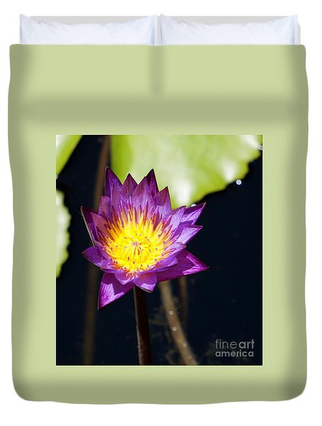 Water Lily 13 Duvet Cover