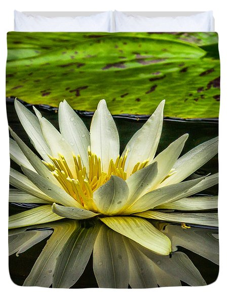 Water Lily 15-3 Duvet Cover