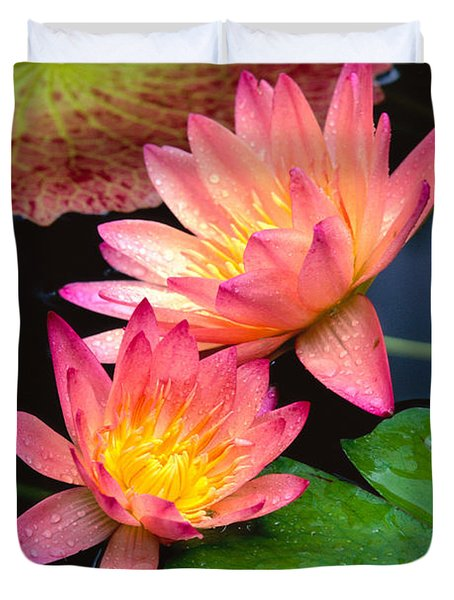 Water Lily Duvet Cover by Bill Brennan - Printscapes