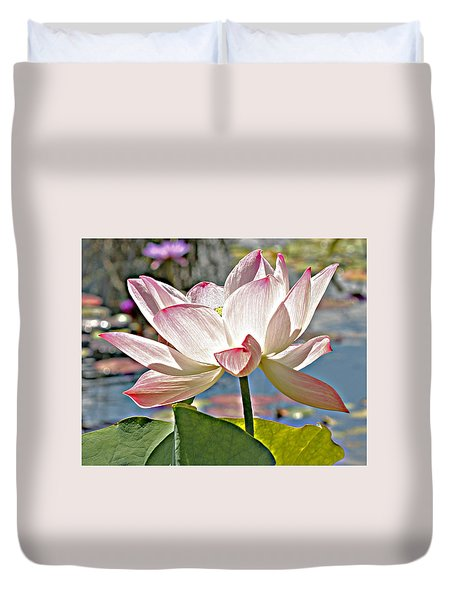 Water Lily Duvet Cover by Catherine Alfidi