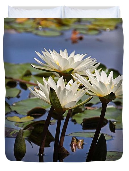 Water Lily Reflections Duvet Cover