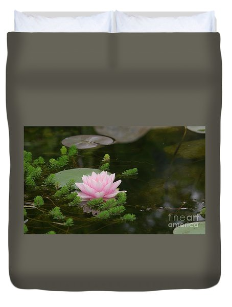 Water Lily Duvet Cover by Victor K