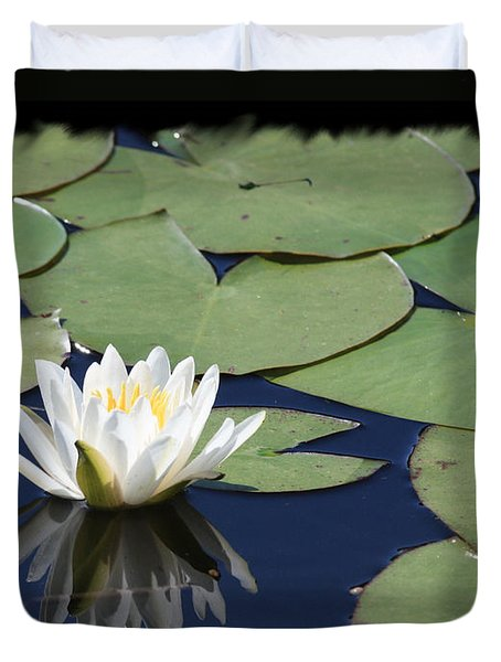 Water Lily With Black Border Duvet Cover by Carol Groenen