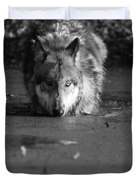 Duvet Cover featuring the photograph Water Wolf I by Shari Jardina