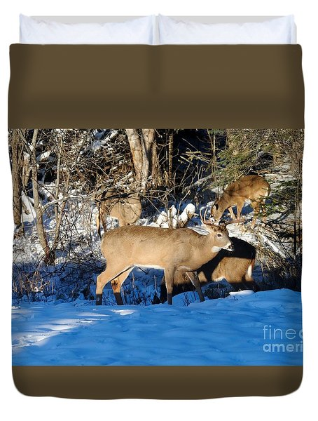 Waterhole Gathering Duvet Cover