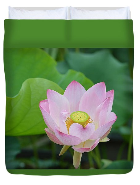 Waterlily Blossom With Seed Pod Duvet Cover by Linda Geiger