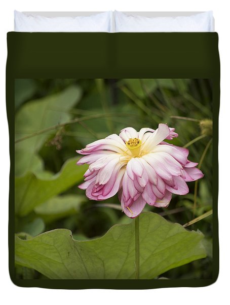 Waterlily Phasing Out Duvet Cover by Linda Geiger