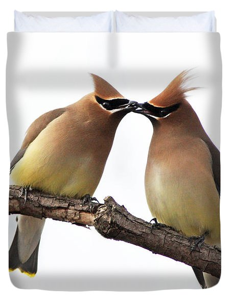 Waxwings In Love Duvet Cover