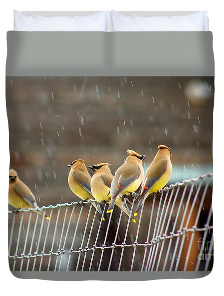 Waxwings In The Rain Duvet Cover