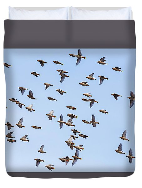 Duvet Cover featuring the photograph Waxwings by Mircea Costina Photography
