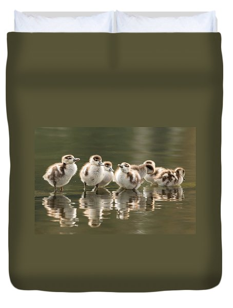 We Are Family - Seven Egytean Goslings In A Row Duvet Cover