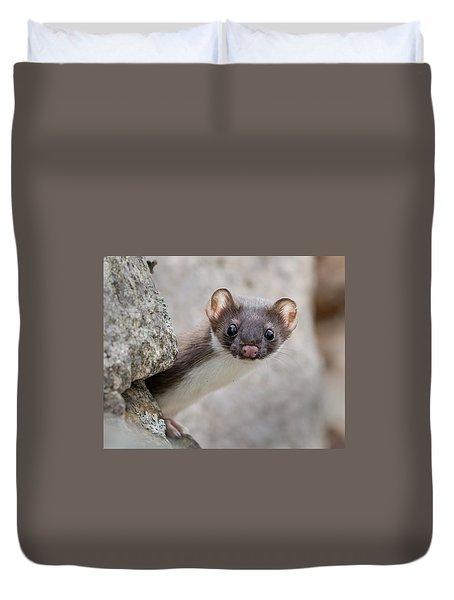 Weasel Peek-a-boo Duvet Cover